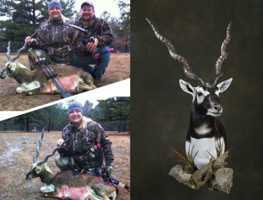 blackbuck-before-and-after